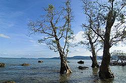 अंडमान एवं निकोबार द्वीपसमूह